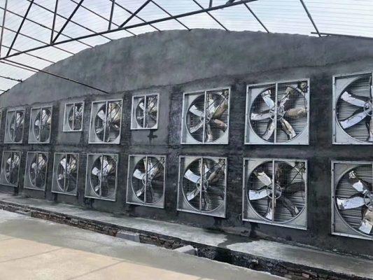 Giá quạt hút công nghiệp 1000×1000 tốt nhất
